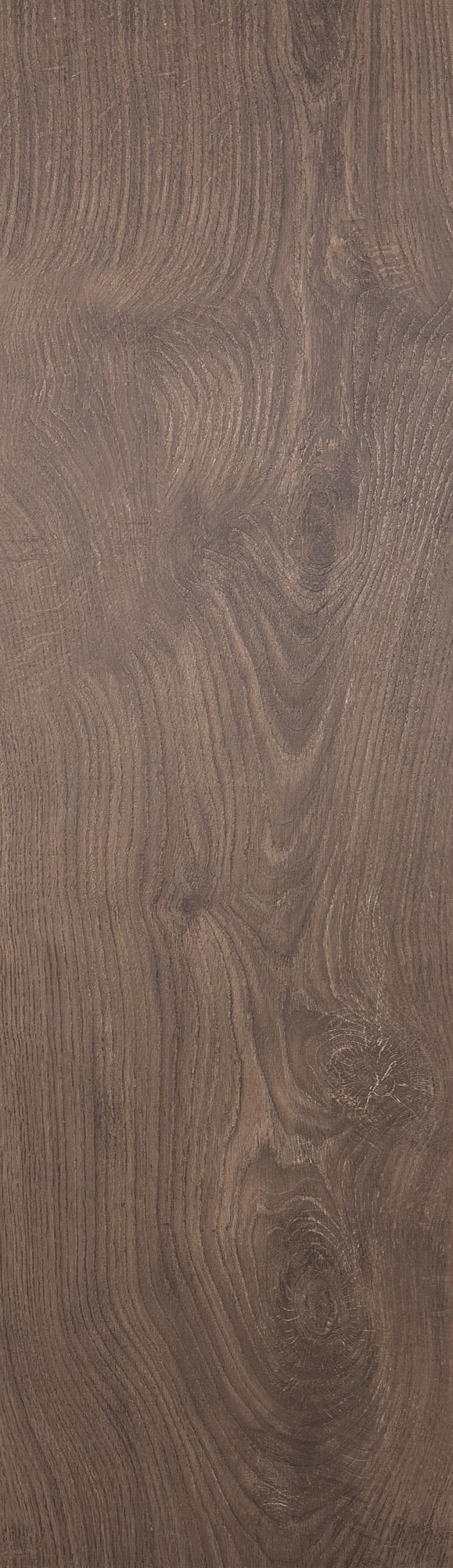 Plinthe - Chêne pédonculé sépia
