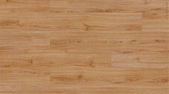 Plinthe - European oak
